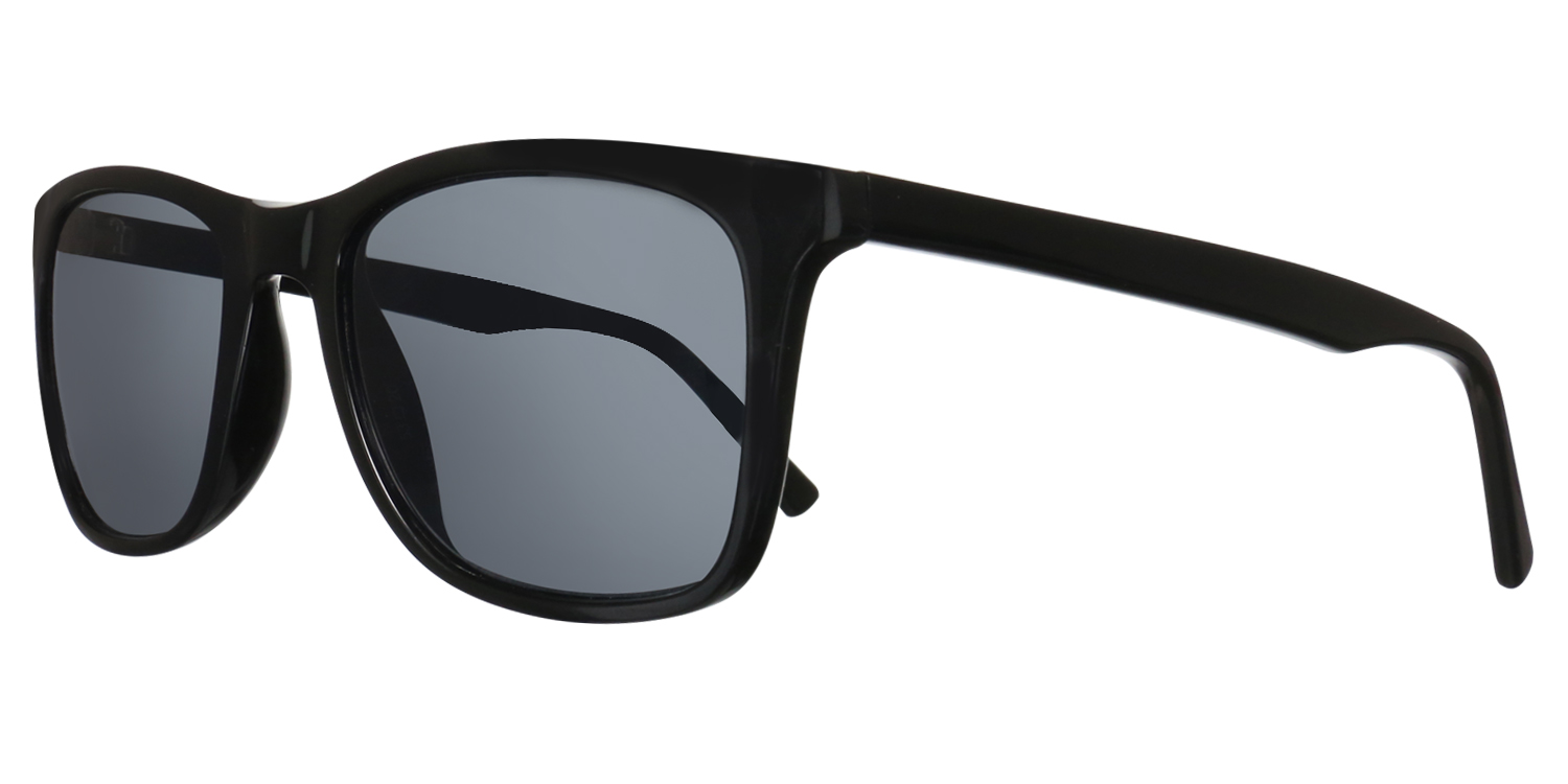 Sunglass Collection 103